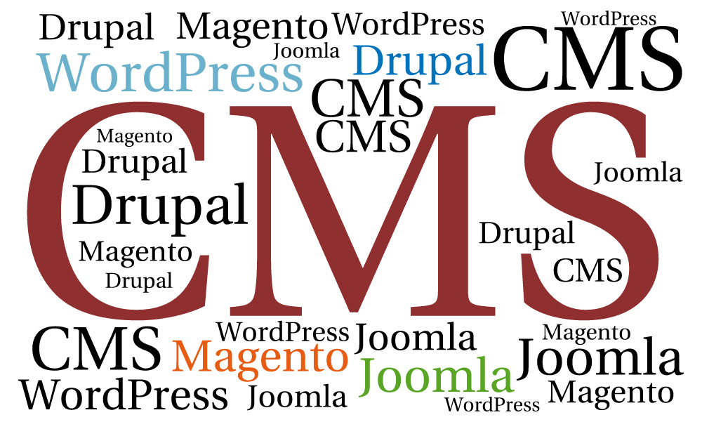 Content Management System - WordPress Webseite